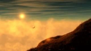 Van Dik Hout - Stip aan de hemel