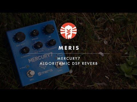 Meris Mercury7   Guitar Pedal   Vintage King