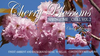 Beautiful Cherry Blossoms Springtime Chill Bonn Sakura -Finest Ambient and Background Music to Relax