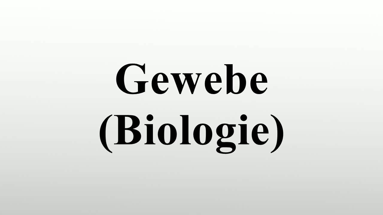 Gewebe (Biologie) - YouTube