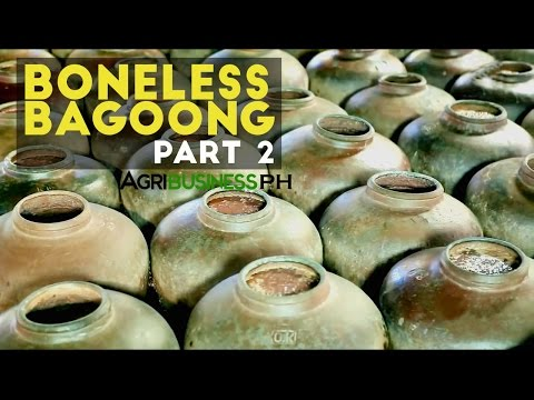 Boneless Bagoong Part 2 : How to Make Boneless Bagoong and  Alamang | Agribusiness Philippines