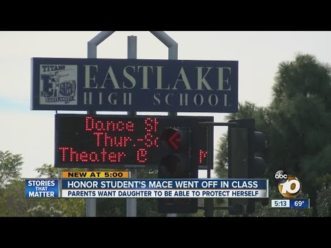 South Bay high school student reprimanded after Mace goes off in class