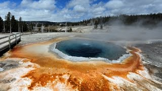 Man severely burned by Yellowstone hot spring
