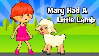 Mary Had A Little Lamb Nursery Rhymes for children - Animated video for kids