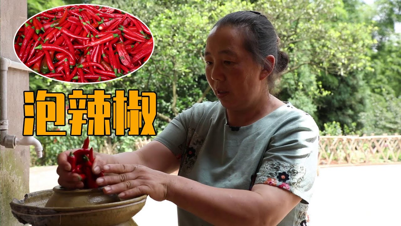 辣椒红了,思宇和妈妈一起摘回家,做满满一坛子泡辣椒【幺妈和幺叔】