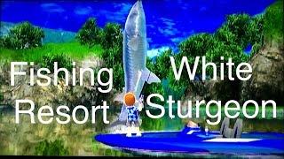 Let's Play: Fishing Resort Wii, White Sturgeon
