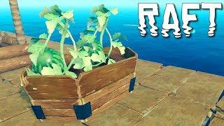 Uprawa arbuzów | RAFT (#9)