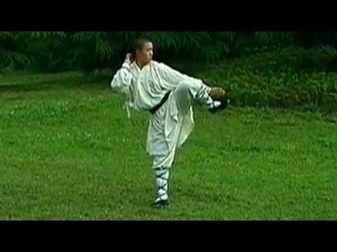 Shaolin big Buddha kung fu (luohan quan), simplified