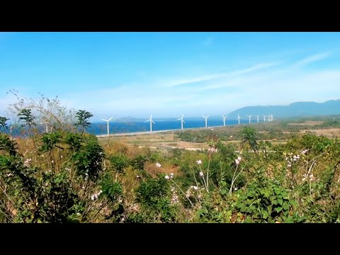 Our Clean Energy Future  | California Academy of Sciences