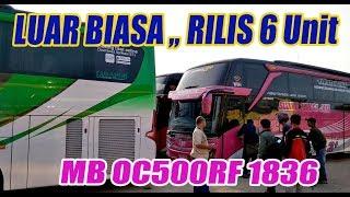 AKHIRNYA RILIS Juga 6 Unit Sudiro Tungga Jaya Chassis Premium.. MB OC500RF 1836