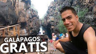 6 lugares GRATIS que puedes conocer en Galápagos