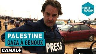 Palestine : Gaza à genoux - L'Effet Papillon - CANAL+