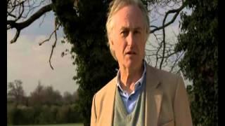 Dawkins vs Ratzinger I.E.S. Jorge Juan Filosofía
