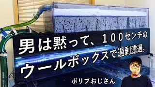 男は黙って、100センチのウールボックスで過剰濾過。 thumbnail