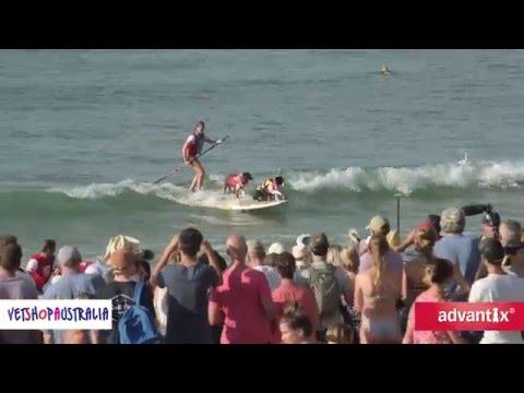 2016 Vetshop Australia Surfing Dog Spectacular