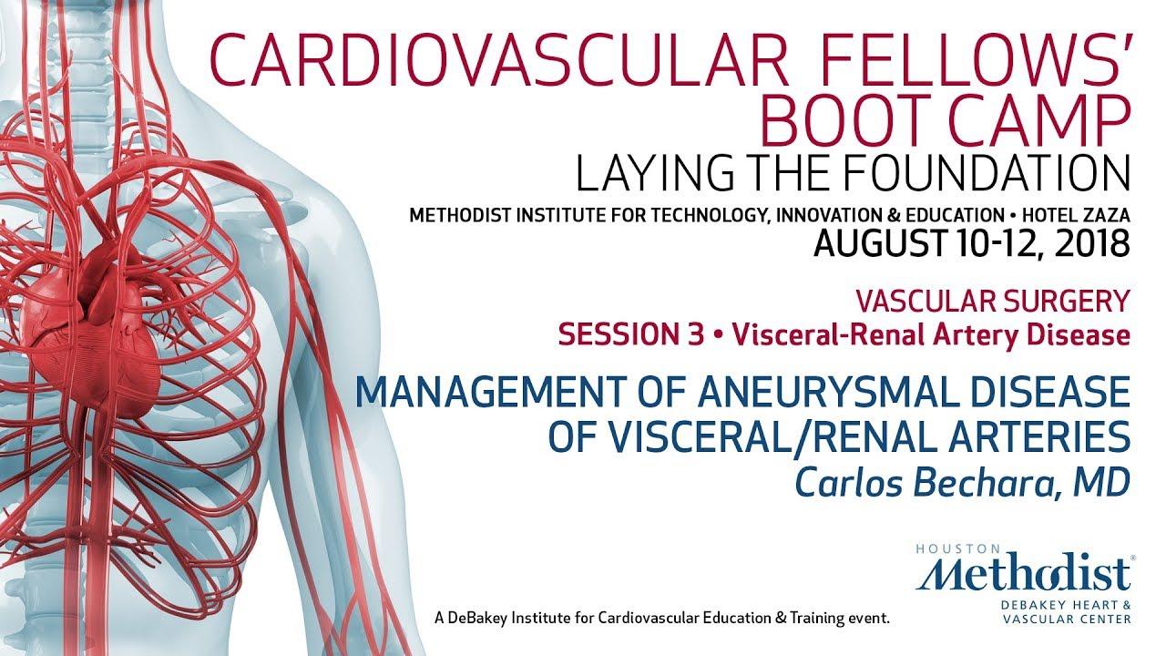 Management Of Aneurysmal Disease Of Visceralrenal Arteries Carlos