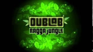 Ragga Jungle / Dnb  - Juice Of Jungle Vol 1 Mix 2015 by Dublab