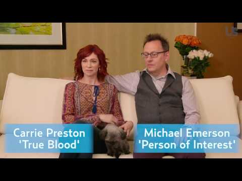 Meet Chumley  Michael Emerson & Carrie Preston's adorable dog