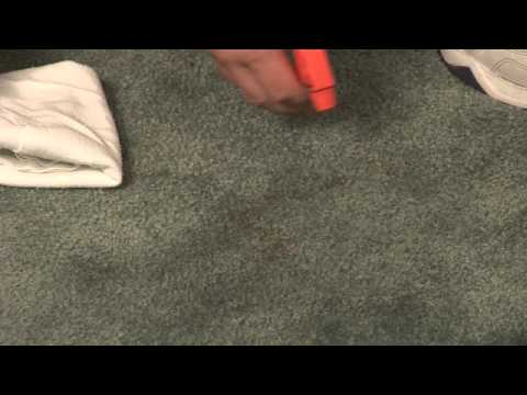 Home Remedies for Removing Carpet Stains