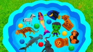 Learn Sea Animals For Kids - Sea Animals Farm Animals Animal Sounds For Children