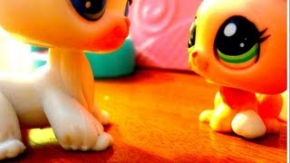 """Littlest Pet Shop: Running Away (Episode #1 """"Abuse"""") [REMAKE]"""