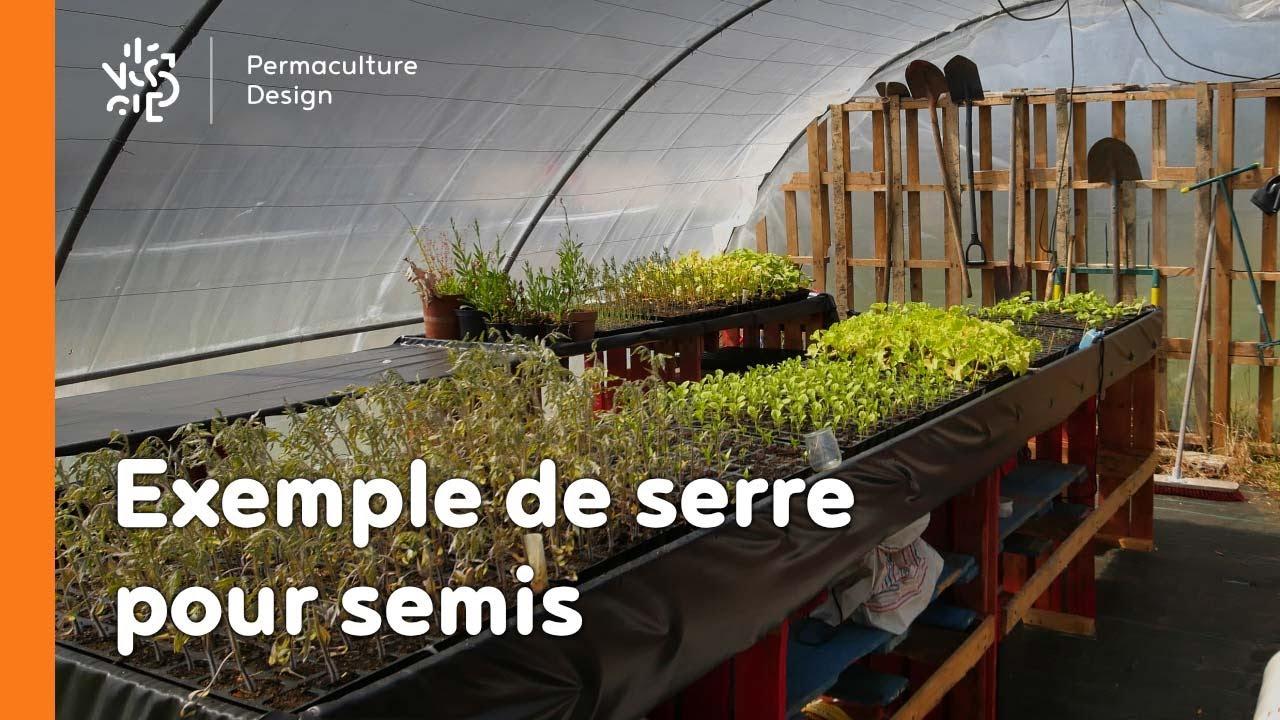 un exemple de serre pour semis
