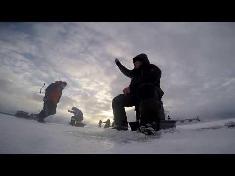 Безмотылка в сезоне 2015 16 года  Снято с подводной камерой Aqua Vu