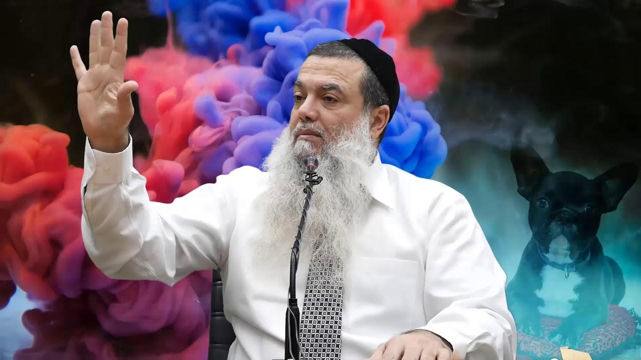 הרב יגאל כהן - קצרים | שים פס על הקנאים שמחפשים אותך! [כתוביות]
