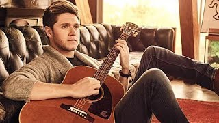 Niall Horan HINTS A Possible One Direction Reunion!?