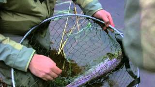 River Clyde Fishing - Oct 22nd 2011 - Another days fishing