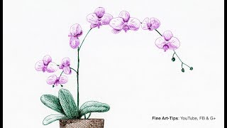 an orchid drawing lesson
