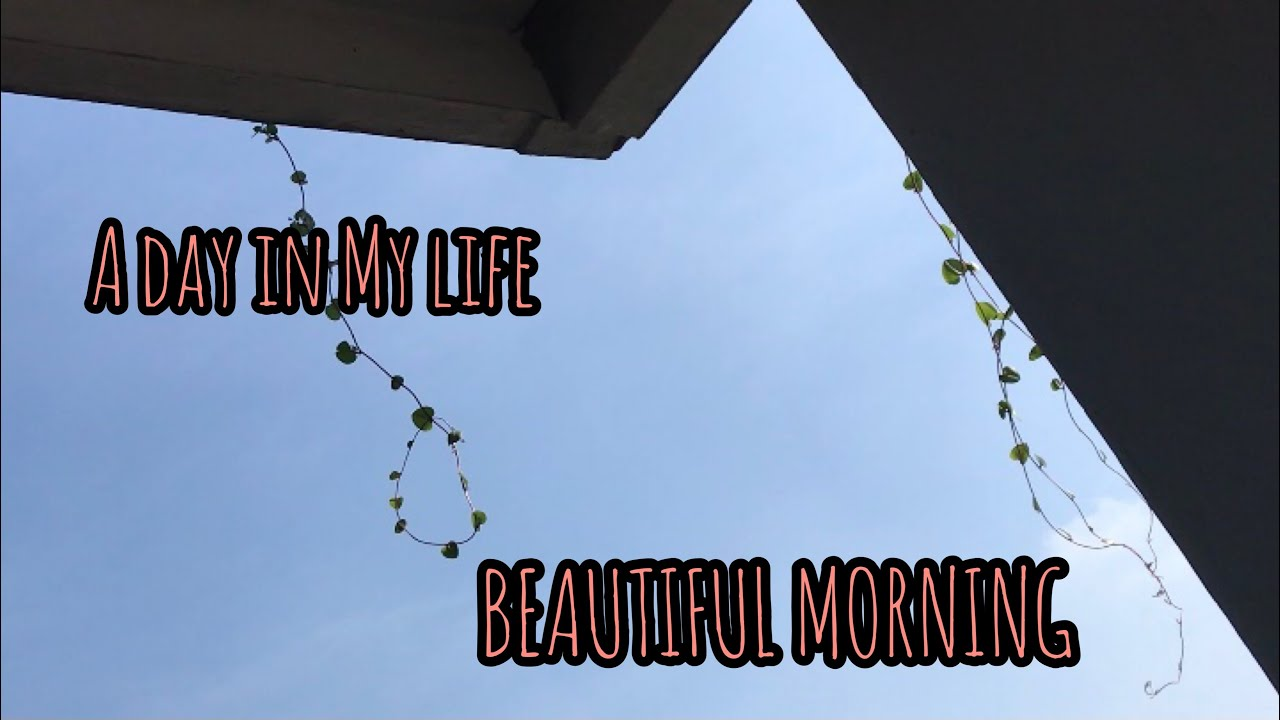 BEAUTIFUL MORNING | A DAY IN MY LIFE