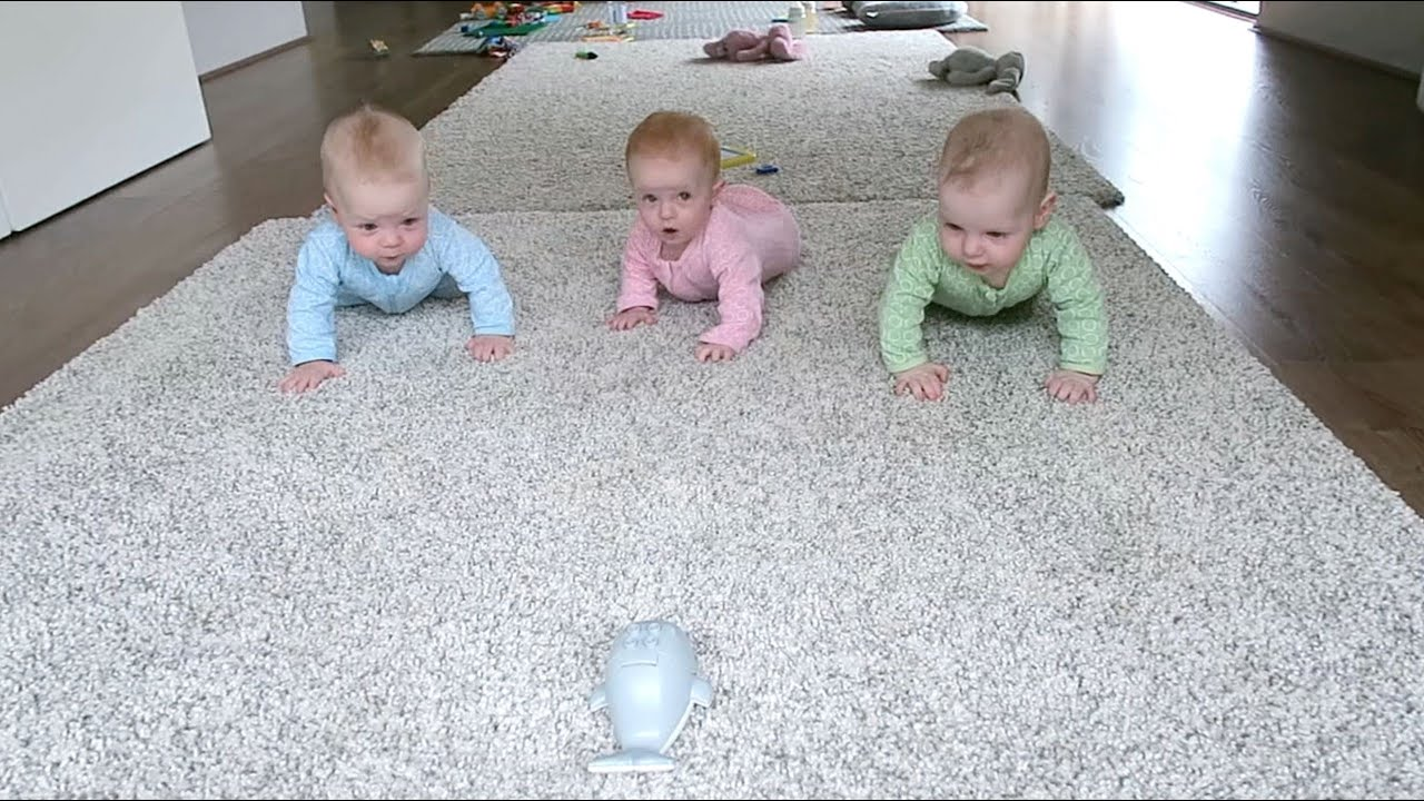 Baby Triplets Having a Race! - YouTube