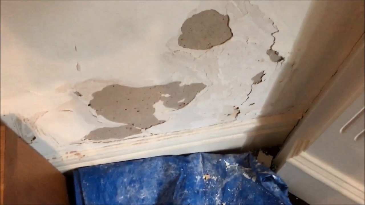 Water Damaged Plaster With Wall Paper Repair