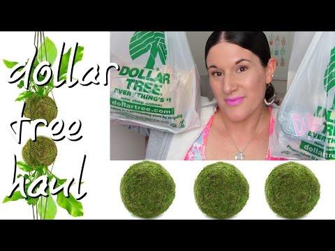 DOLLAR TREE HAUL | MAY 6, 2017