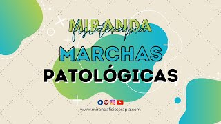 Tipos de marcha patologicas: atáxica, espástica, equina, hemiparética, paraparética