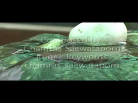 Journey to inner peace Meditation Music by Chamras Saewatapo