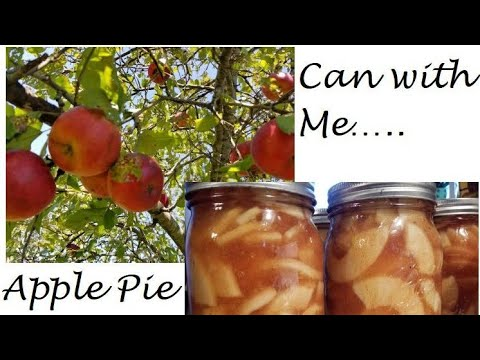Can With Me!!! ~Apple Pie Filling~