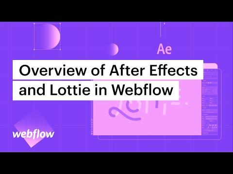 After Effects and Lottie, meet Webflow | Webflow Blog