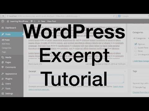Download WordPress Excerpt Tutorial