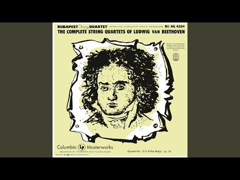 String Quartet No. 13 In B-Flat Major, Op. 130: V. Cavatina - Adagio Molto Espressivo