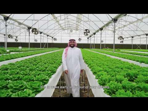 The Bahrain Award for Entrepreneurship Video - 3rd Edition