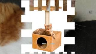 фото домиков уличных для кошек