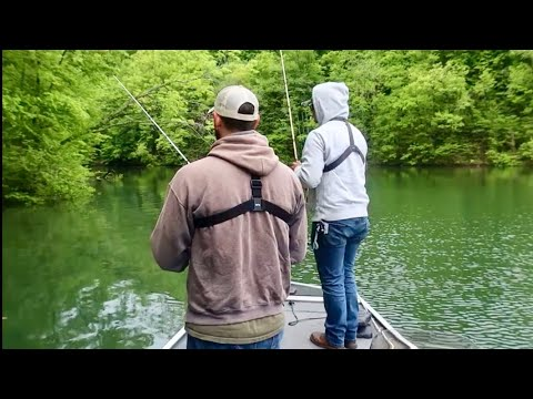 Catching A Variety Of BIG!!  Fish - Dale Hollow Lake Tennessee