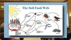 Growing Cannabis Organically & the Soil Food Web - Jeff Lowenfels