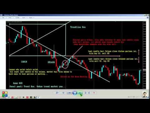 Vp propo forex trader