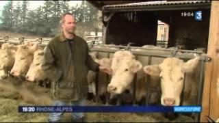 L'affaire de la viande de cheval énerve les agriculteurs