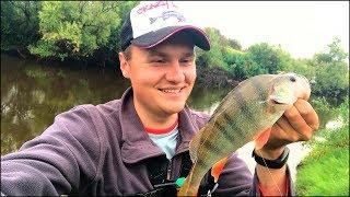 Окунь в корягах на Ультралайт. Размер ПОРАДОВАЛ! Рыбалка на Малой речке в конце лета. Микроджиг 2018