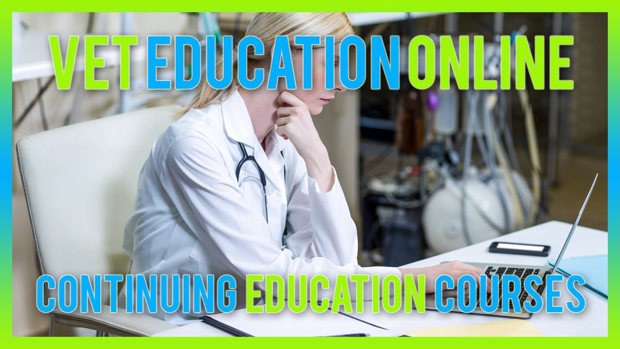 Vet education online   youtube
