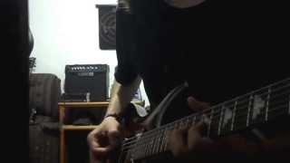 Amon Amarth -  Siegreicher Marsch (Guitar cover)